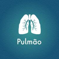 Pulmao01
